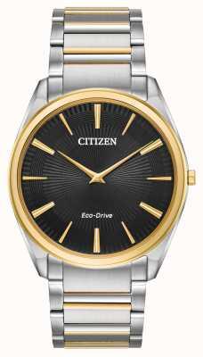 Citizen | Männer | stiletto ultradünn | zweifarbiges Armband | AR3074-54E